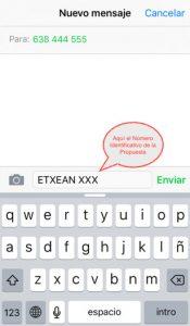 sms-confirmar-rentanet-etxean-bizkaia-2017
